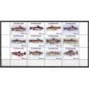 Suriname 2017 05 Vissen