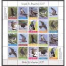 St. Maarten 2017 05 Vogels