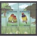Suriname 2018 07 Papegaai en Kaketoe