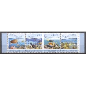 St. Maarten 2018 01 Ocean life