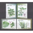 Aruba 2019 06 Medicinale planten