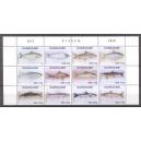 Suriname 2020 10 Vissen