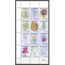 Suriname 2021 02 Bloemen