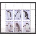 Suriname 2021 03 Pinguins